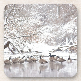 Geese in Snow Coaster