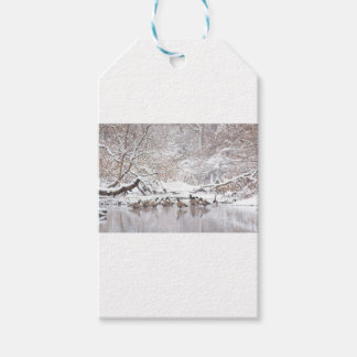 Geese in Snow Gift Tags