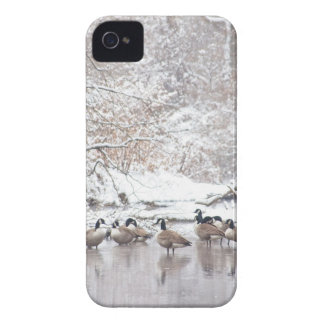 Geese in Snow iPhone 4 Covers