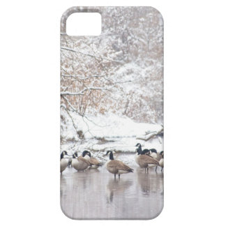 Geese in Snow iPhone 5 Cases