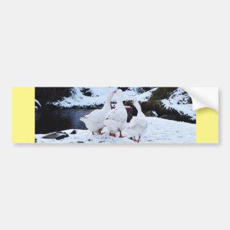 Geese in Winter Bumper Sticker