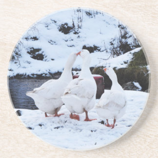 Geese in Winter Coaster