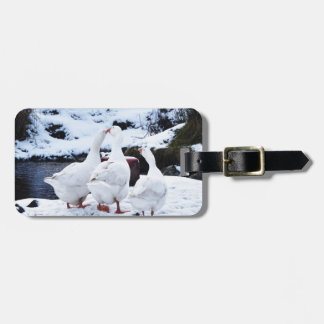 Geese in Winter Luggage Tag