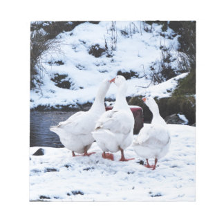 Geese in Winter Notepad