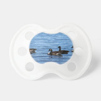 Geese on Lake Baby Pacifiers