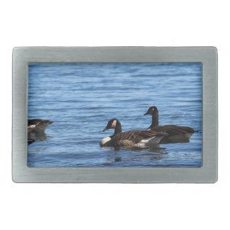 Geese on Lake Belt Buckle