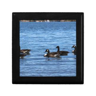 Geese on Lake Gift Box