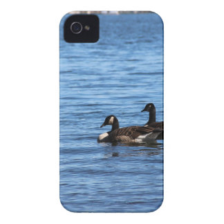 Geese on Lake iPhone 4 Case-Mate Case