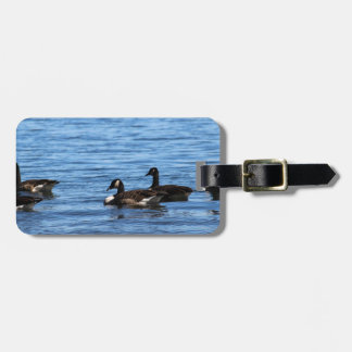 Geese on Lake Luggage Tag