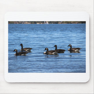 Geese on Lake Mouse Pad