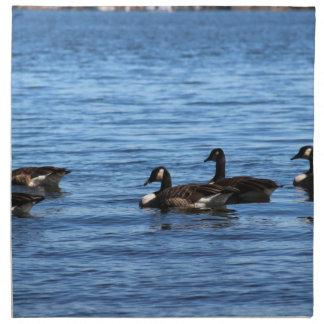 Geese on Lake Napkin