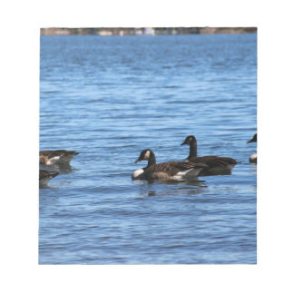 Geese on Lake Notepad