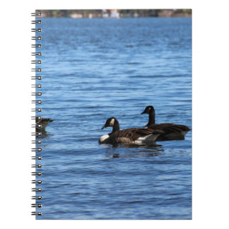 Geese on Lake Spiral Notebook