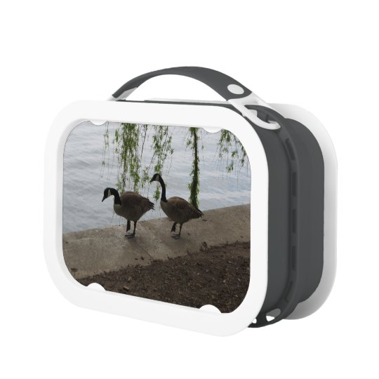 Geese Strolling Lunch Box