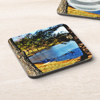 Geese swimming in half frozen lake - trees beverage coaster