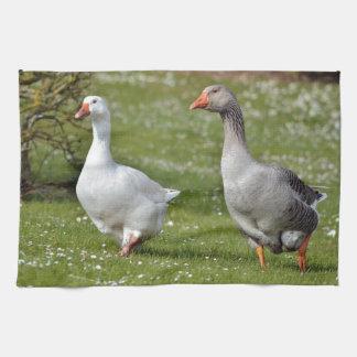 Geese walking on grass kitchen towel