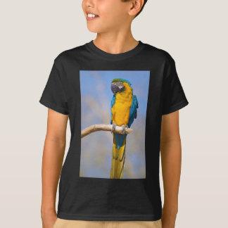 Gelbbrustara macaw on perch T-Shirt