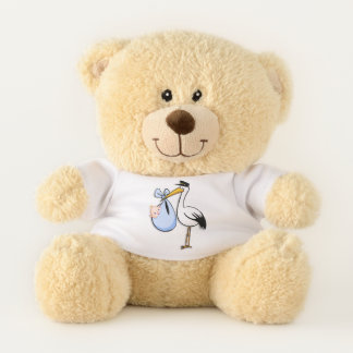 Gender Reveal Baby Boy White Stork Pink Cloth Teddy Bear