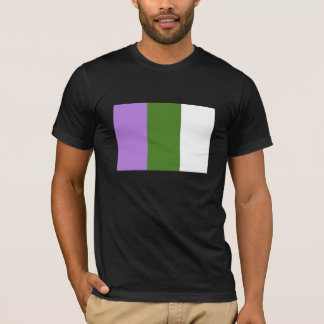 Genderqueer flag shirt