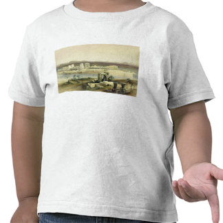 General View of the Island of Philae, Nubia, from Tee Shirts