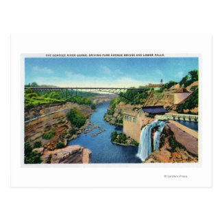 Genesee River Gorge, Park Avenue Bridge Postcard
