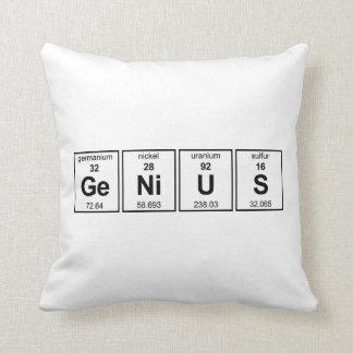 GeNiUS American MoJo Pillow