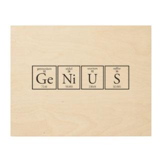 Genius Wood Canvases