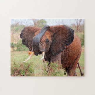 Gentle Beasts of the Plains.Elephants Jigsaw Puzzle