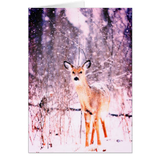Gentle Deer Offers Peace & Joy Card
