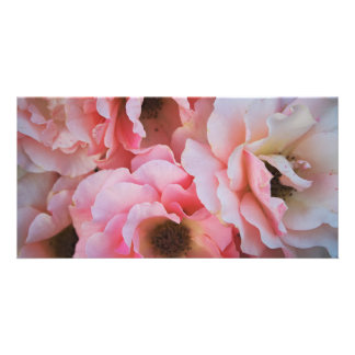 Gentle Pink Rose Blooms - Flower photography Custom Photo Card