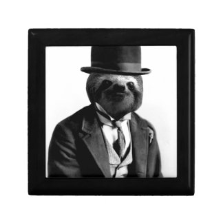 Gentleman Sloth #2 Gift Box