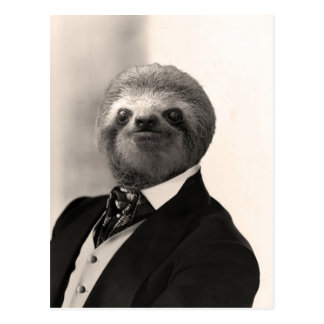 Gentleman Sloth #4 Postcard