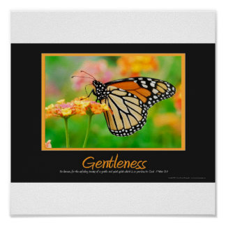 Gentleness Poster