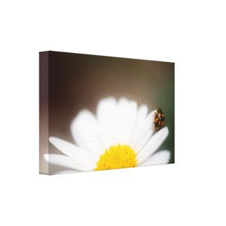 Gently and softly canvas print