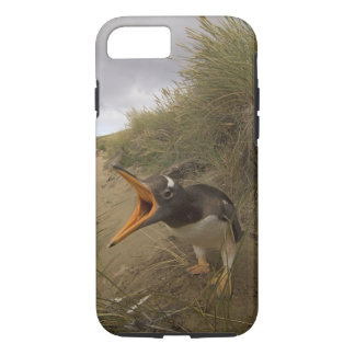gentoo penguin, Pygoscelis papua, on Beaver iPhone 7 Case