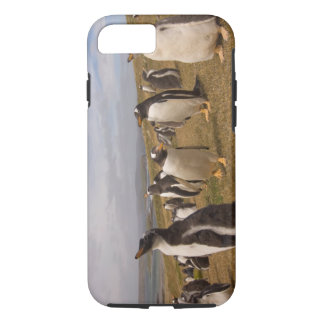 gentoo penguin, Pygoscelis papua, rookery on iPhone 7 Case