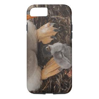 Gentoo Penguin (Pygoscelis papua) with chick, iPhone 7 Case
