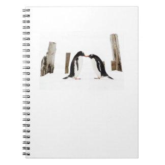 Gentoo Penguins Kissing notepad Spiral Notebook