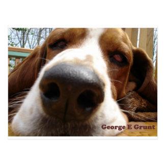 George Postcard