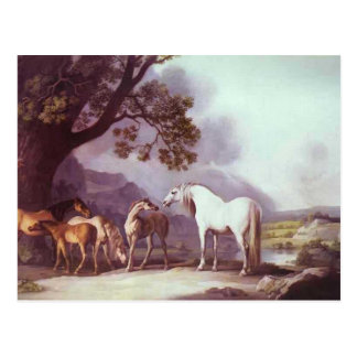 George Stubbs- Mares and Foals in a Landscape Post Card