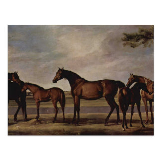 George Stubbs-Mares,foals before a looming storm Postcards