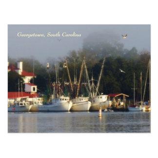 Georgetown Shrimp Boats Souvenir Postcard