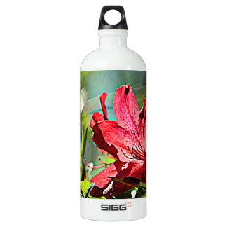 Georgia Azalea Water Bottle