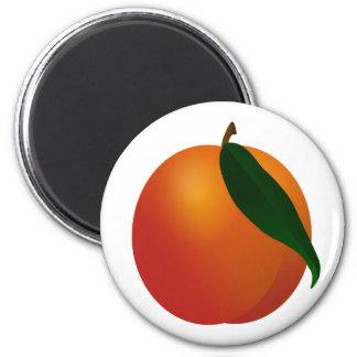Georgia Peach / Apricot Magnet