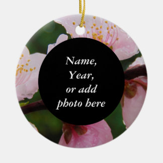 Georgia Peach Tree Blossoms Floral Photo 0534 Ceramic Ornament