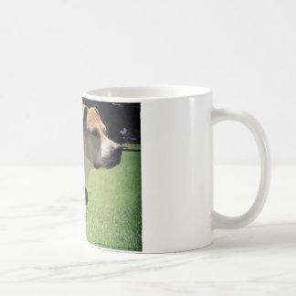 Georgia Pit Bull Mug