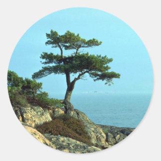 Georgian Bay Shoreline, Lake Huron, Ontario, Canad Classic Round Sticker