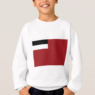 Georgian flag sweatshirt