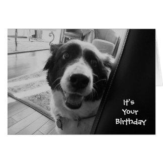 georgiapeeking, It's Your Birthday Card