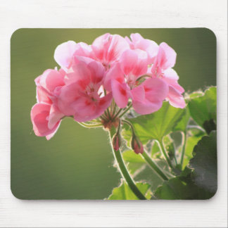 geranium mouse pad